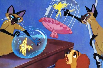 Disney Looking to Cast People of Color in Lady and the Tramp Remake