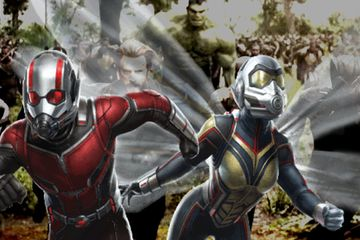 Ant-Man & The Wasp Director Didn't Want Them to Appear in Infinity War