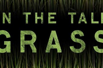 Netflix Adaptation of Stephen King & Joe Hill's In The Tall Grass Sets Cast