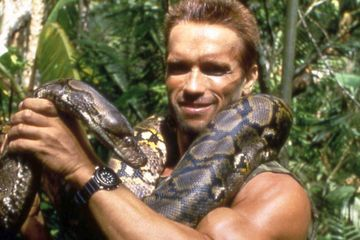 The Real Reason Schwarzenegger Said No to The Predator
